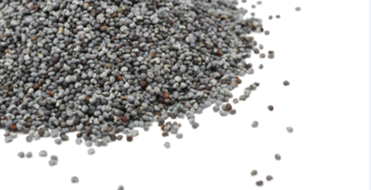 What's the deal with chia seeds?