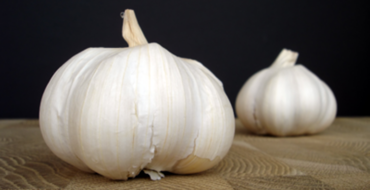 In praise of garlic