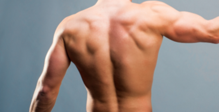How to use gym machines for a sexy back