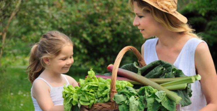 Healthy Spring Foods.