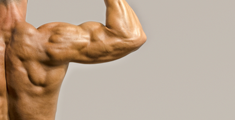 3 simple exercises for the strongest arms