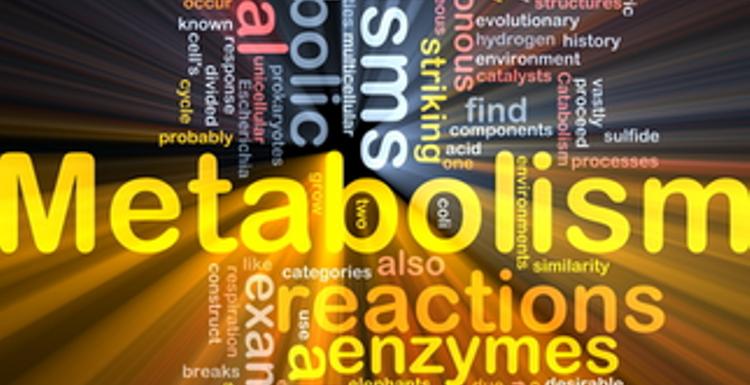 Ten ways to boost your metabolism