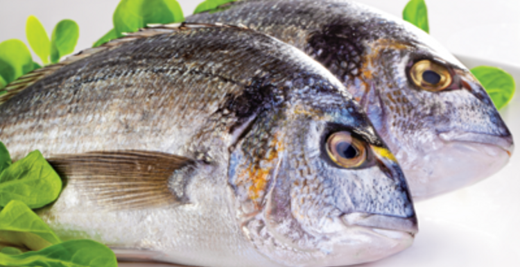 Catch the health benefits of fish