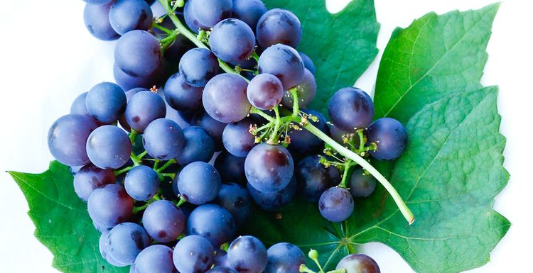 A-Z of Super foods: Grapes