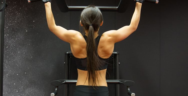 Exercise 101 : the pull up bar