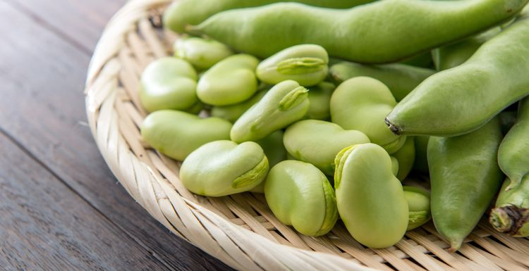 FAVA BEANS: THE LATEST SUPERFOOD