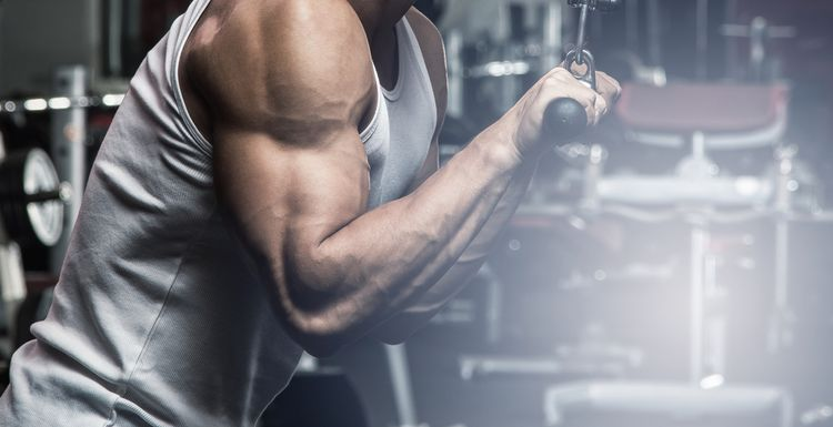 WORK YOUR TRICEPS USING JUST DUMBBELLS