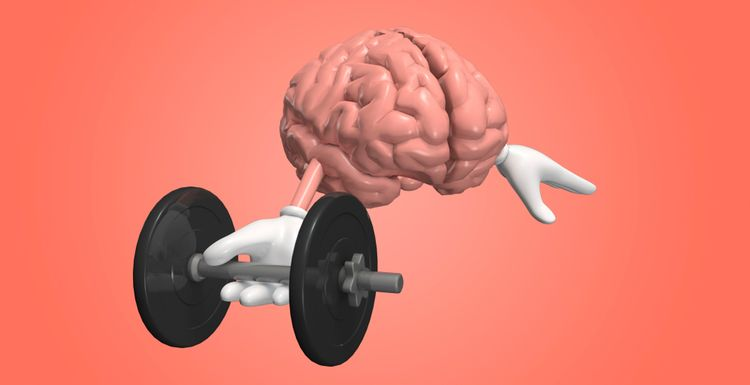 Exercise improves memory function