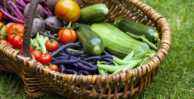 THE TOP THREE SUMMER VEGETABLES