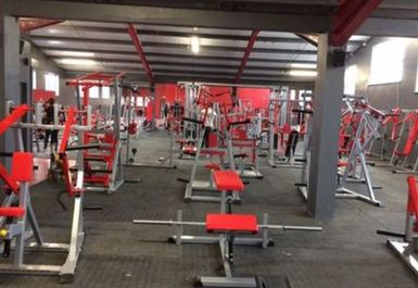 Platinum Gym and Fitness Image 1 of 8