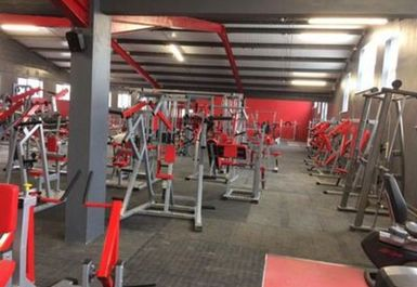 Platinum Gym and Fitness Image 2 of 8