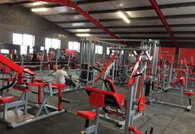 Platinum Gym and Fitness Image 4 of 8
