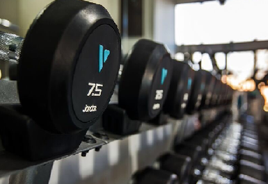 Vision Fitness Image 3 of 5