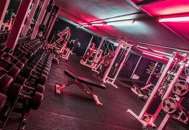 Martyn Ford Gym Image 2 of 8