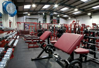 Ab Salute Gym Lakeside Image 7 of 8