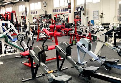 Rhino's Gymnasium Image 1 of 9