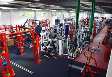Rhino's Gymnasium Image 5 of 9