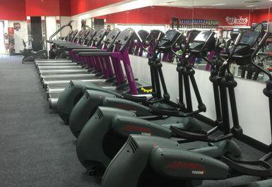 Flex Physiques Gym Image 3 of 8