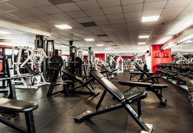 FITNESS UNLIMITED Image 3 of 9
