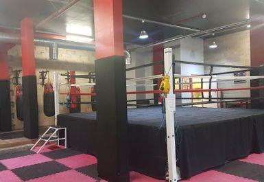 Glove Up Gym