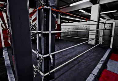 Lions Den Gym Image 3 of 5