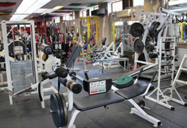 Genesis Gym (Bulldog)