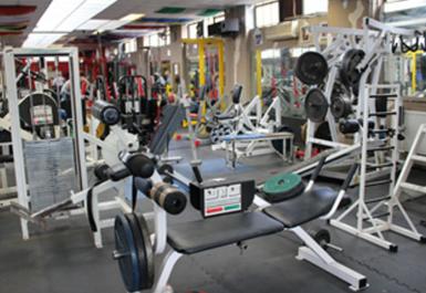 Genesis Gym & Fitness Studio Image 3 of 4