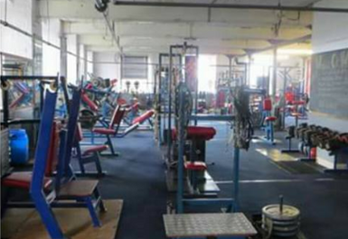 Olympic Gym Image 2 of 4
