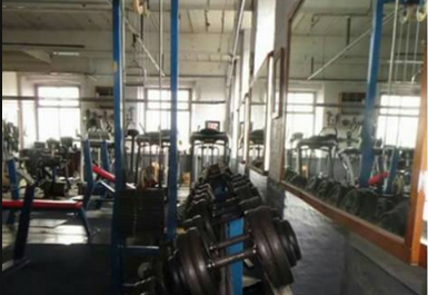 Olympic Gym Image 3 of 4