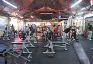 main gym area at Titanium Gym london