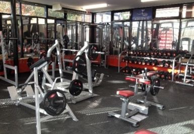 weights at Grit Gym Chichester