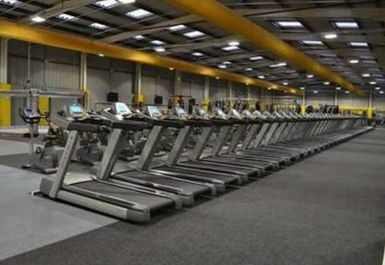 Treadmills at Xercise4Less Rotherham