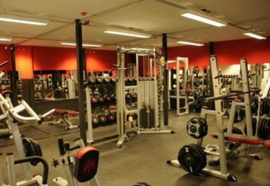 MAIN GYM AREA AT MUSCLE FURY BOUTIQUE GYM AND NUTRITION CENTRE BRIGHTON