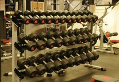 FREE WEIGHTS AT MUSCLE FURY BOUTIQUE GYM AND NUTRITION CENTRE BRIGHTON