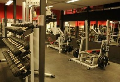 WEIGHTS AREA AT MUSCLE FURY BOUTIQUE GYM AND NUTRITION CENTRE BRIGHTON