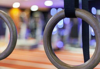 The Gym Way