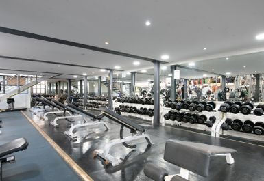 The Body Factory GYM