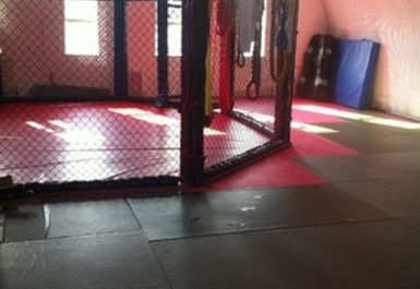 Mixed Martial Arts Den