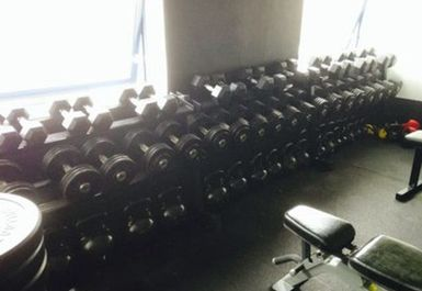 dumbbells @ White Noise Gym Staines