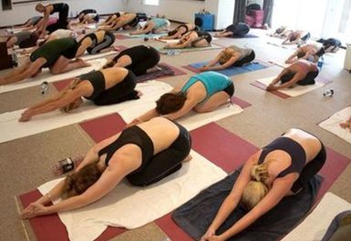 The Hot Spot Yoga Image 1 of 2