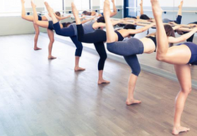The Fitness Evolution barre