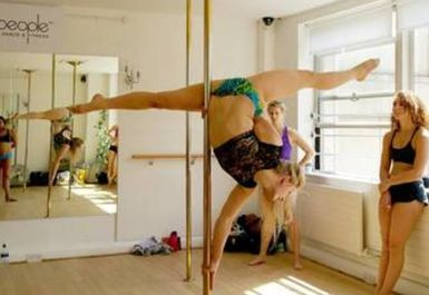 The Polepeople Studio Image 1 of 8