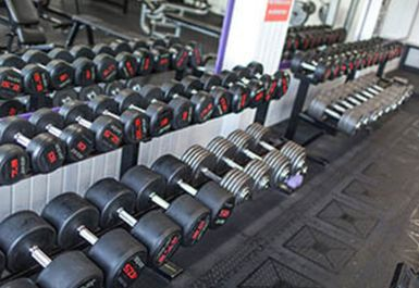Maxx Muscle Gym