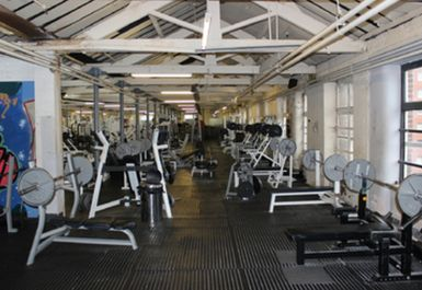 Olympic Sports Gym Image 6 of 10