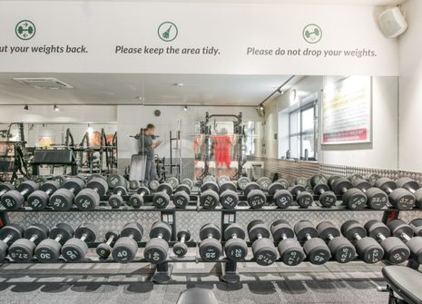 Image from Evolve Gym