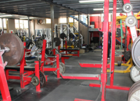 Genesis Gym (Bulldog) picture