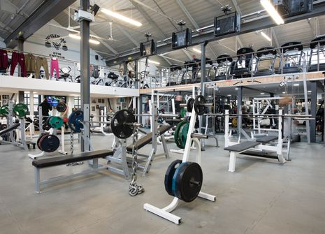 The Body Factory GYM picture