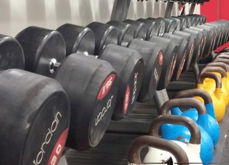 Image from UNIT 1 GYM