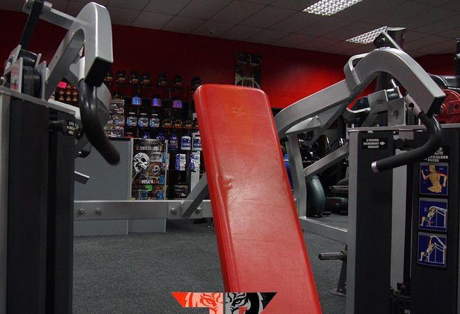 Flex Physiques Gym picture