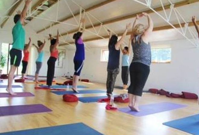 The Rose School of Transformational Yoga - East Finchley